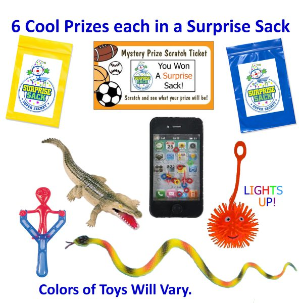 6 Cool Prizes each in their own Secret Surprise Sack.